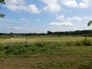 Photo 10: 2075 Black River Road in Meadowville: 108-Rural Pictou County Farm for sale (Northern Region)  : MLS®# 201919625