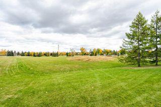 Photo 34: 243 RHATIGAN Road W in Edmonton: Zone 14 House for sale : MLS®# E4192724