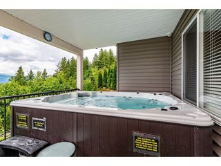 """Photo 40: 46865 SYLVAN Drive in Chilliwack: Promontory House for sale in """"Promontory"""" (Sardis)  : MLS®# R2470583"""