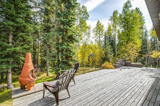Photo 41: 132 - 5417 Highway 579: Rural Mountain View County Detached for sale : MLS®# A1037135