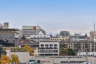 Photo 25: 304 689 Bay St in : Vi Downtown Condo for sale (Victoria)  : MLS®# 860454