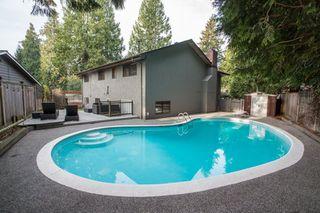 Photo 33: 10528 SUNCREST Drive in Delta: Nordel House for sale (N. Delta)  : MLS®# R2525886