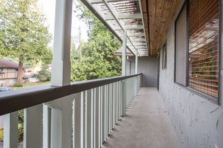 Photo 17: 10528 SUNCREST Drive in Delta: Nordel House for sale (N. Delta)  : MLS®# R2525886