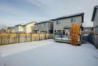 Photo 28: 156 Cougar Ridge Circle SW in Calgary: Cougar Ridge Detached for sale : MLS®# A1060036
