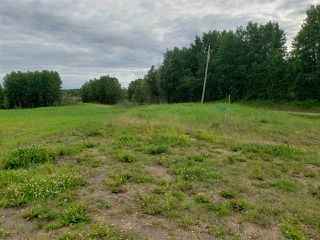 Photo 1: 52405A 24 Range Road: Rural Parkland County Rural Land/Vacant Lot for sale : MLS®# E4165755