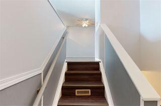 Photo 22: 4516 35A Avenue in Edmonton: Zone 29 House for sale : MLS®# E4191237
