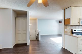 Photo 7: 4516 35A Avenue in Edmonton: Zone 29 House for sale : MLS®# E4191237