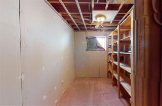 Photo 32: 4516 35A Avenue in Edmonton: Zone 29 House for sale : MLS®# E4191237