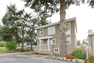 Photo 38: 1178 Dolphin Street: White Rock Home for sale ()  : MLS®# F1111485