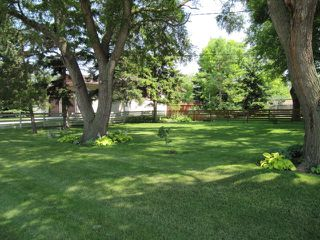 Photo 9: 251 Gilmore Avenue in Winnipeg: North Kildonan Residential for sale (North East Winnipeg)