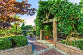 Photo 16: 605 11920 80 Avenue in Delta: Scottsdale Condo for sale (N. Delta)  : MLS®# R2503369