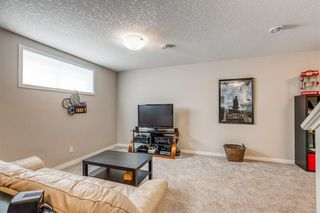 Photo 20: 27 Masters Square SE in Calgary: Mahogany Semi Detached for sale : MLS®# A1039030