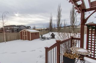 Photo 31: 237 Coopers Grove SW: Airdrie Detached for sale : MLS®# A1057227