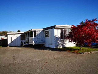 "Photo 20: 134 3300 HORN Street in Abbotsford: Central Abbotsford Manufactured Home for sale in ""Georgian Park"" : MLS®# R2411809"