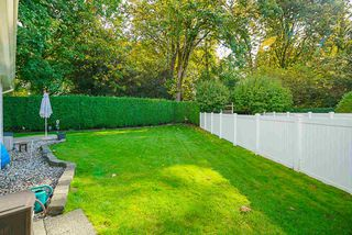 """Photo 14: 41 9208 208 Street in Langley: Walnut Grove Townhouse for sale in """"Churchill Park"""" : MLS®# R2412309"""