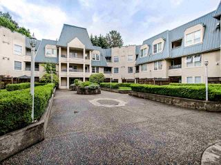 "Photo 19: 306 295 SCHOOLHOUSE Street in Coquitlam: Maillardville Condo for sale in ""Chateau Royale"" : MLS®# R2466921"