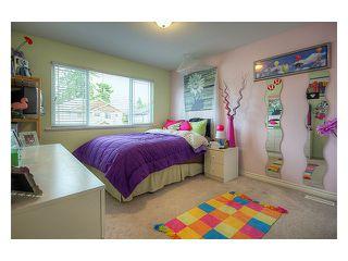 Photo 5: 23766 115A AV in Maple Ridge: Cottonwood MR House for sale : MLS®# V868444