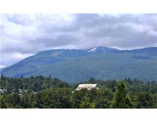 Photo 9: # 404 223 MOUNTAIN HY in North Vancouver: Lynnmour Condo for sale : MLS®# V899286