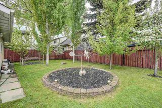 Photo 34: 12036 143 Avenue in Edmonton: Zone 27 House for sale : MLS®# E4199669
