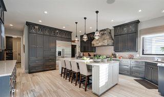 Photo 12: 2434 CAMERON RAVINE Drive in Edmonton: Zone 20 House for sale : MLS®# E4213704