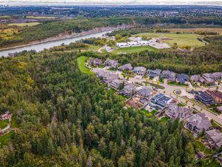 Photo 50: 2434 CAMERON RAVINE Drive in Edmonton: Zone 20 House for sale : MLS®# E4213704