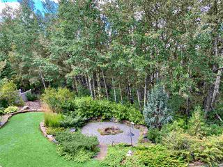 Photo 43: 2434 CAMERON RAVINE Drive in Edmonton: Zone 20 House for sale : MLS®# E4213704