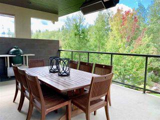 Photo 45: 2434 CAMERON RAVINE Drive in Edmonton: Zone 20 House for sale : MLS®# E4213704