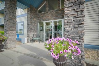 Main Photo: 238 16311 95 Street in Edmonton: Zone 28 Condo for sale : MLS®# E4192876