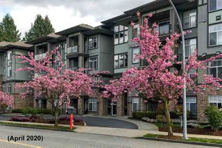 "Photo 34: 408 33338 MAYFAIR Avenue in Abbotsford: Central Abbotsford Condo for sale in ""The Sterling"" : MLS®# R2456135"