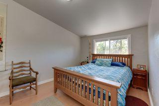 Photo 25: 10811 52 Avenue in Edmonton: Zone 15 House for sale : MLS®# E4214337
