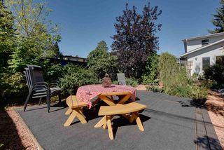 Photo 9: 10811 52 Avenue in Edmonton: Zone 15 House for sale : MLS®# E4214337