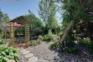 Photo 6: 10811 52 Avenue in Edmonton: Zone 15 House for sale : MLS®# E4214337