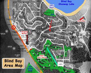 Photo 63: 2536 Centennial Drive: Blind Bay House for sale (Shuswap Lake)  : MLS®# 10043467