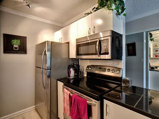 Photo 6: 204 11040 82 Street in Edmonton: Zone 09 Condo for sale : MLS®# E4171064
