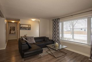 Photo 5: 731 Swailes Avenue in Winnipeg: Residential for sale (4F)  : MLS®# 202026862