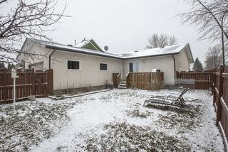 Photo 22: 731 Swailes Avenue in Winnipeg: Residential for sale (4F)  : MLS®# 202026862