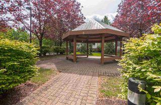 """Photo 6: 402 15030 101 Avenue in Surrey: Guildford Condo for sale in """"Guildford Marquis"""" (North Surrey)  : MLS®# R2432215"""