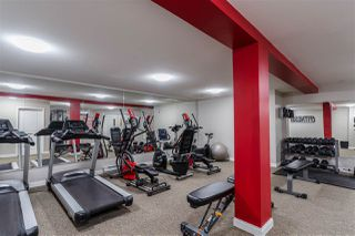 """Photo 25: 411 5650 201A Street in Langley: Langley City Condo for sale in """"Paddington Station"""" : MLS®# R2465928"""
