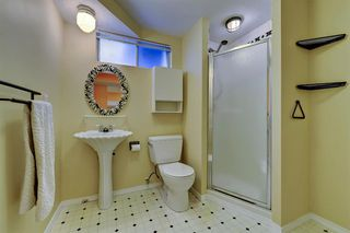 Photo 22: 7 WHITE OAK Crescent SW in Calgary: Wildwood Detached for sale : MLS®# A1021618