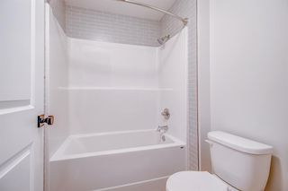 Photo 44: 12 Cranbrook Bay SE in Calgary: Cranston Detached for sale : MLS®# A1042185