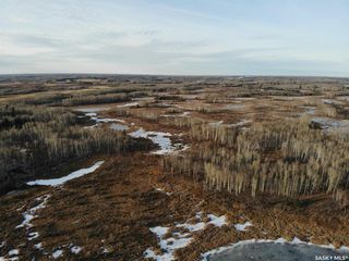 Photo 6: Daschuk land in Preeceville: Lot/Land for sale (Preeceville Rm No. 334)  : MLS®# SK831639