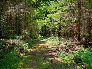 "Photo 17: Lot 49 FLINT Road: Keats Island Land for sale in ""10 Acres"" (Sunshine Coast)  : MLS®# R2460996"