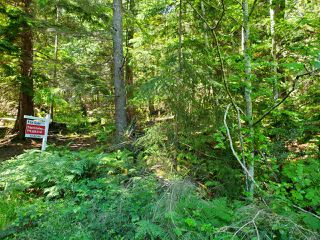 "Photo 18: Lot 49 FLINT Road: Keats Island Land for sale in ""10 Acres"" (Sunshine Coast)  : MLS®# R2460996"