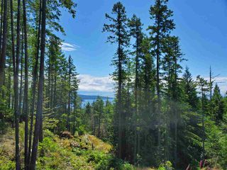 "Photo 2: Lot 49 FLINT Road: Keats Island Land for sale in ""10 Acres"" (Sunshine Coast)  : MLS®# R2460996"
