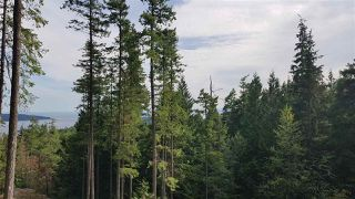 "Photo 3: Lot 49 FLINT Road: Keats Island Land for sale in ""10 Acres"" (Sunshine Coast)  : MLS®# R2460996"
