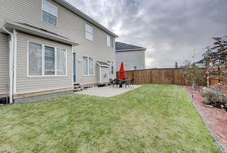 Photo 42: 132 WATERLILY Cove: Chestermere Detached for sale : MLS®# C4306111