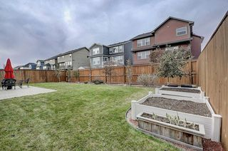 Photo 43: 132 WATERLILY Cove: Chestermere Detached for sale : MLS®# C4306111