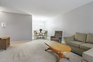 """Photo 4: 103 12096 222 Street in Maple Ridge: West Central Condo for sale in """"Canuck Plaza"""" : MLS®# R2521052"""