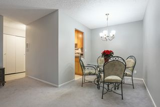 """Photo 7: 103 12096 222 Street in Maple Ridge: West Central Condo for sale in """"Canuck Plaza"""" : MLS®# R2521052"""