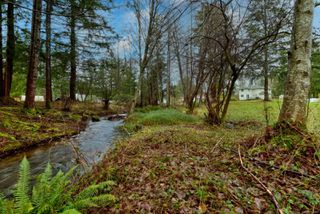 Photo 6: 6575 Poulton Rd in : CV Merville Black Creek House for sale (Comox Valley)  : MLS®# 862861